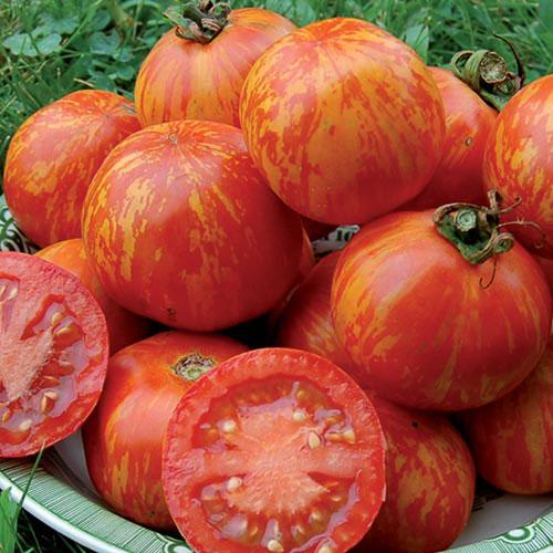Tomato.Red Zebra